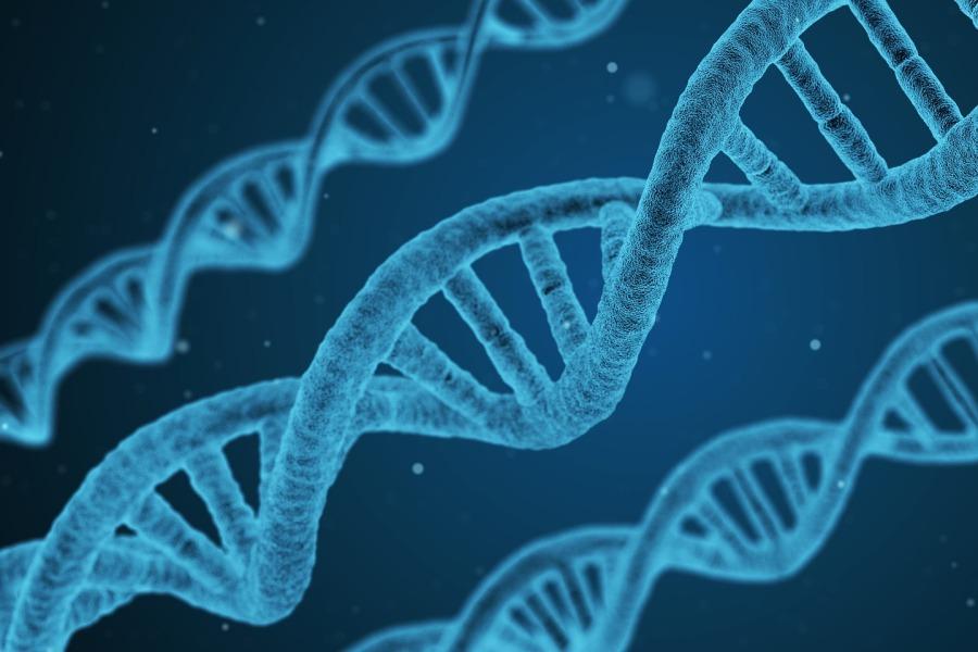 foto van een dna molekuul